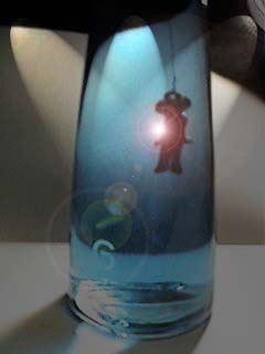 Jamiroquai bottle